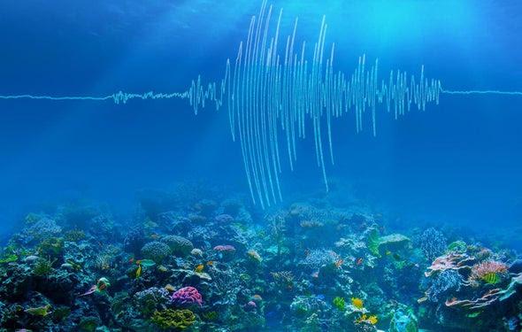 Quake Soundwaves Providing Climate Change Clues